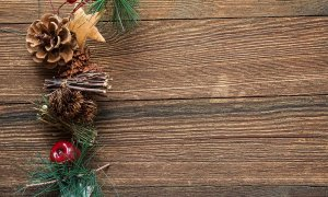 Vydělejte si peníze na Vánoce! Která brigáda je pro vás nejlepší?